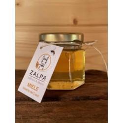 Miele di Acacia del Louc 40g